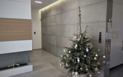 Ściana z betonu – tło dla wymagającego wnętrza